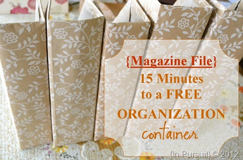 Magazine File Organization Container