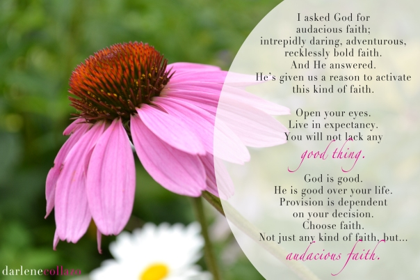 Audacious faith, 001